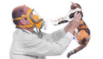 Как убрать запах кошачьей мочи?